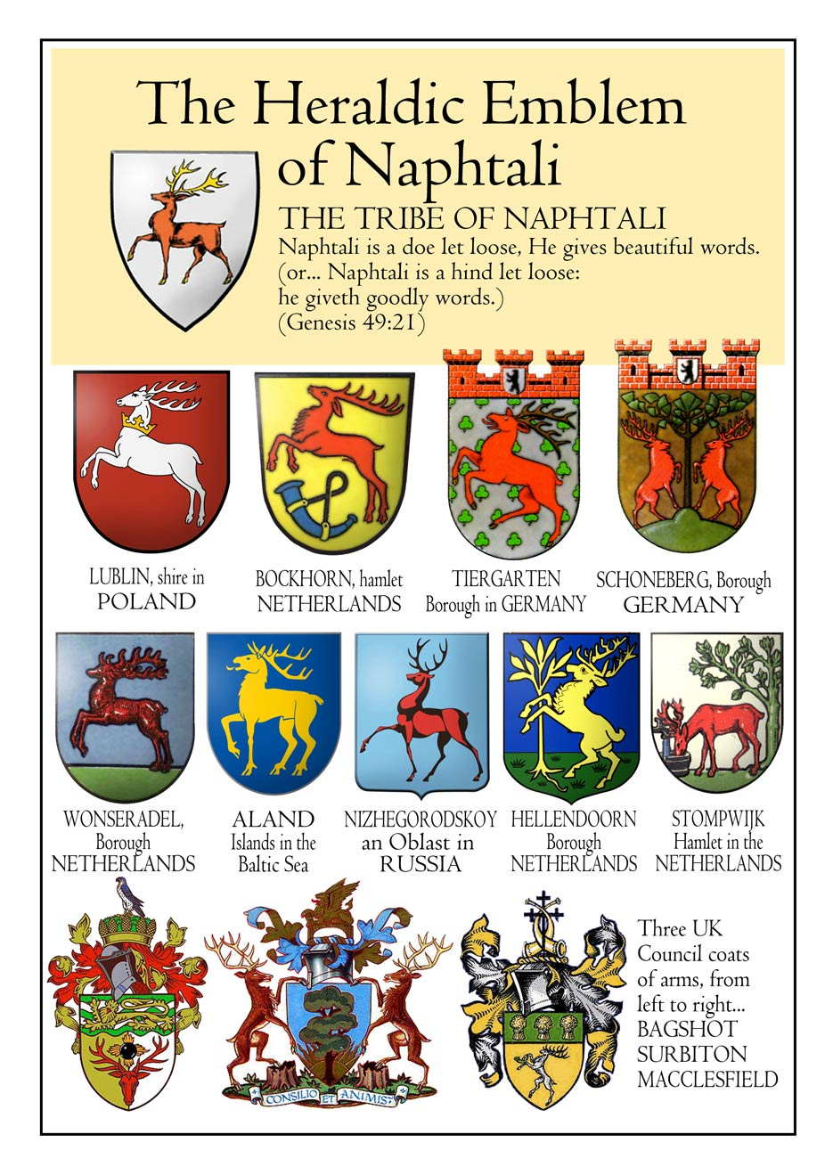 Emblems of the Tribe of Naphtali